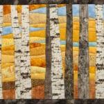 Birch trees 14 in autumn 2