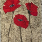 Three red poppies on grey 2017