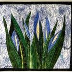 Blue-flowers 2