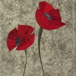 Two Red Poppies on grey