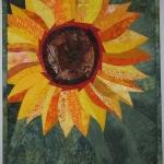 Sunflower 3