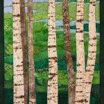 Birch Trees 13 in Summer
