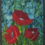 Three Red Poppies