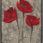 Three Poppies on Grey Brown