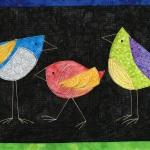 3 colorful birds on black